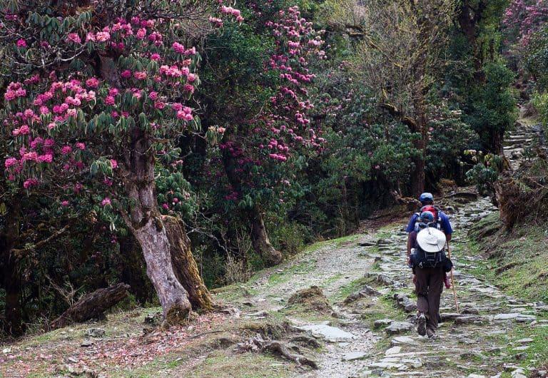 Trekking in Nepal in March